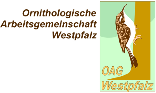 LOGO OAG Westpfalz